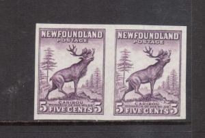 Newfoundland #191b XF/NH Imperforate Pair