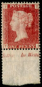 SG43, 1d rose-red plate 145, NH MINT MARGINAL. Cat £48++. TI