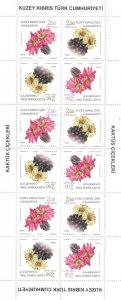 TURKISH CYPRUS 2019- FLOWERS - CACTUS - FULL SHEET STAMPS - UMM BLOCK