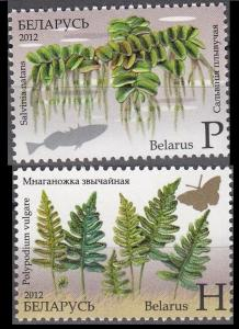 2012Belarus917-18Flora - Ferns.