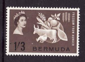 Bermuda-Sc #192-unused hinged set-QEII-Omnibus-Freedom From Hunger-1963-