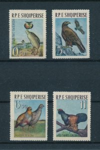 [102926] Albania 1963 Birds vögel oiseaux  MNH