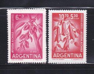Argentina CB23-CB24 Set MNH Flowers (D)