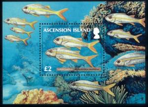 [66826] Ascension 2012 Marine Life Fish Souvenir Sheet MNH