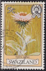Swaziland 350 Dicoma Zeyher 1980