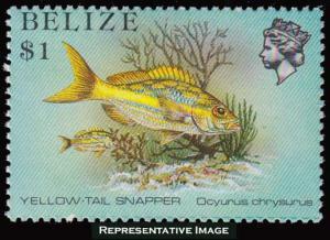 Belize Scott 711 Mint never hinged.