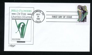 US 2650 Wildflowers - Jack-in-the-pulpit ADDR Artmaster FDC