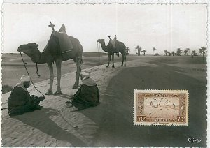 38756  - Algeria - POSTAL HISTORY -  MAXIMUM CARD    1939 : CAMELS & PALM TREES