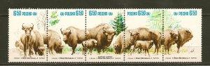 Poland Bison Setenant Strip of 5 1981 MNH