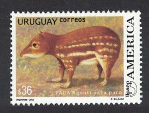 Uruguay Paca paca Rodent 1v 36p SG#2856 MI#2770