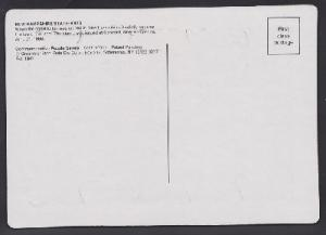 New Hampshire USPS Postcard Puzzle (Scott 2344)