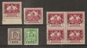Iraq 1949 Tax Officials + Re-entry MNH Block listed varieties