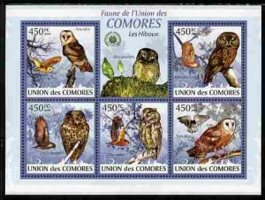 The Comoros 2009 BIRDS OWLS Sheet Perforated Mint (NH)
