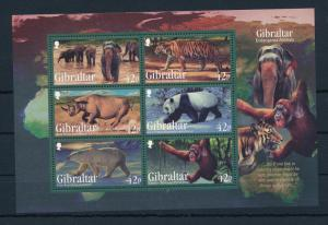 [30245] Gibraltar 2011 Wild Animals Mammals Monkeys MNH Sheet
