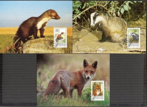 Liechtenstein 1993 Animals Badger Fox Stone Marten 3 Maxi Cards FDC