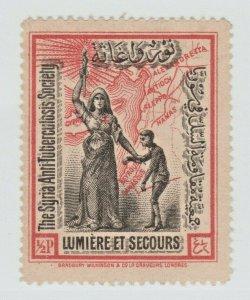Syria Cinderella revenue fiscal stamp 9-14-21- extra nice - no gum- large format