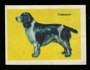 Dog, Matchbox Label Stamp (ST-68)