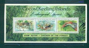 Cocos Is. - Sc# 263. 1992 Birds. MNH $8.00.