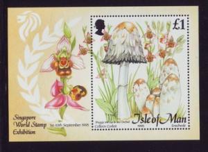 Isle of Man Sc 655 1995 Mushrooms stamp souvenir sheet mint NH