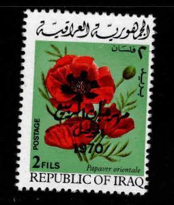 IRAQ Scott 530 Used flower stamp