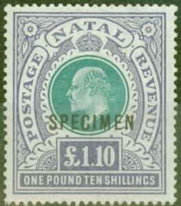 Natal 1902 £1.10s Green & Violet Specimen SG143s V.F Lightly Mtd Mint