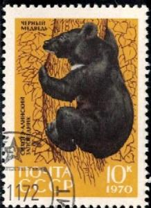 Asiatic Black Bear, Russia stamp SC#3761 used