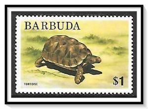 Barbuda #184 Tortoise MH