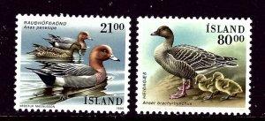 Iceland 721-22 MNH 1991 Birds    (ap4035)
