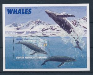 [27135] British Antarctic Territory 1996 Marine Life Whales MNH Sheet