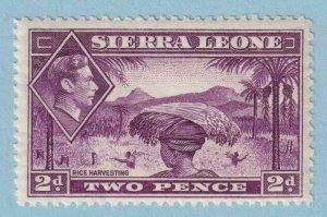 SIERRA LEONE 176 MINT NEVER HINGED OG ** NO FAULTS EXTRA FINE !