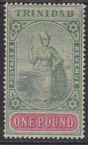 TRINIDAD SG124 1896 £1 GREEN & CARMINE MTD MINT