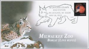 2015, Milwaukee Zoo, Bobcat, Pictorial, 15-148