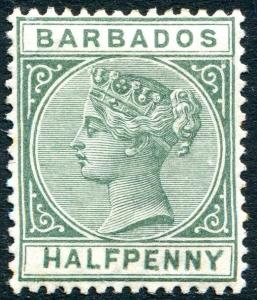 BARBADOS-1882 ½d Dull Green Sg 89 a few toned perfs LIGHTLY MOUNTED MINT V23823