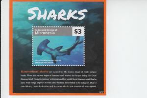 2015 Micronesia Sharks Part II Great Hammerhead SS (Scott 1110) MNH