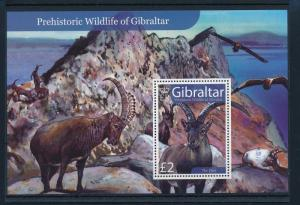 [30258] Gibraltar 2007 Pre Historic Animals Mammals MNH Sheet