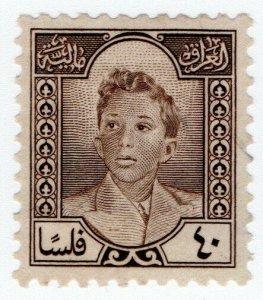 (I.B) Iraq Revenue : Duty Stamp 40f (King Faisal II)