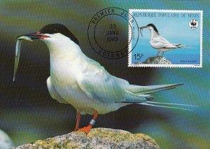 Benin 1989 Maxicard Sc #658 15fr Roseate tern WWF