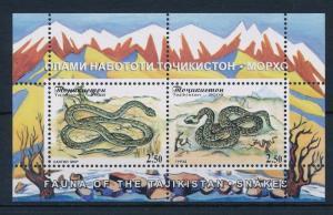 [34959] Tajikistan 2008 Reptiles Snakes MNH Sheet