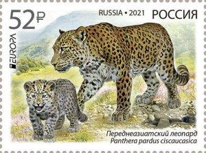 Russia 2021. Endangered species. Persian leopard (MNH OG) Stamp