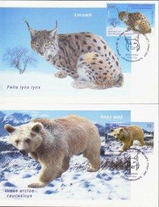 NAGORNO KARABAKH ARMENIA 2009 FAUNA BEAR FOX 3 MAXICARD s MAXIMUM CARD R16617m