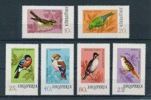 [102927] Albania 1974 Birds vögel oiseaux  MNH