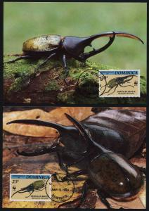 Dominica 1647-50 on Maxi Cards - WWF, Insects, Beetles