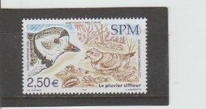 St. Pierre & Miquelon  Scott#  C80  MNH  (2005 Piping Plover)