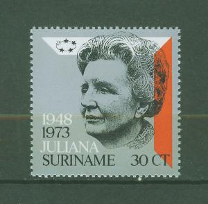 SURINAM/SURINAME 1973 MNH SC.405 Reig of Queen Juliana