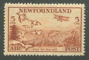 NEWFOUNDLAND C13 MINT VF NH