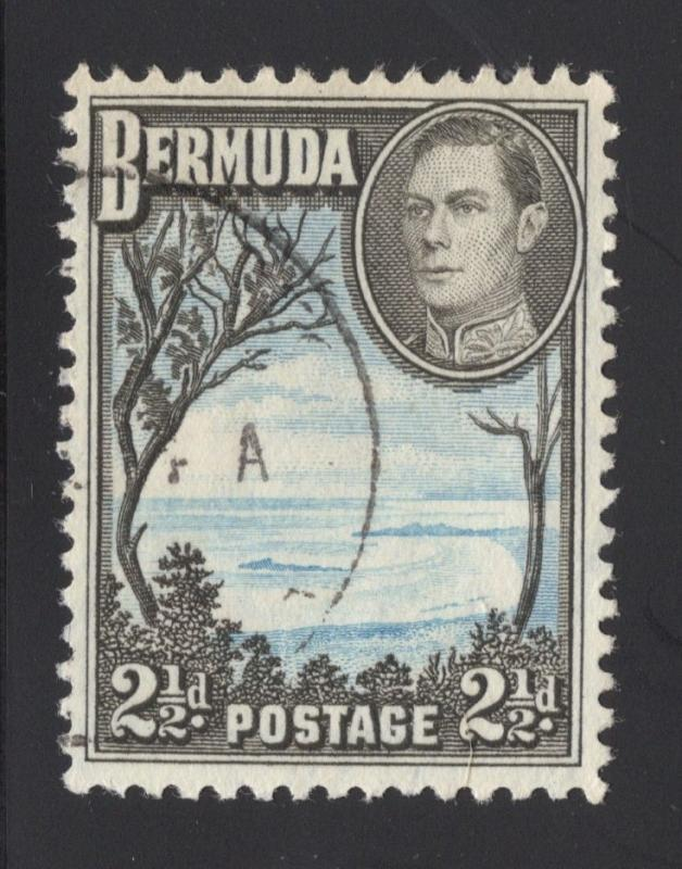 Bermuda #120A Olive Brown & Light Blue - Used