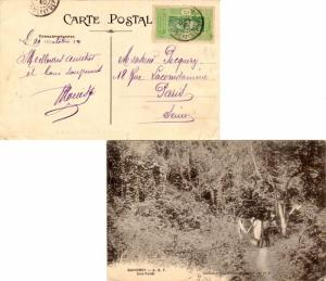 Dahomey 5c Man Climbing Oil Palm 1915 PPC (Dahomey - A.O.F. Une Foret) to Par...