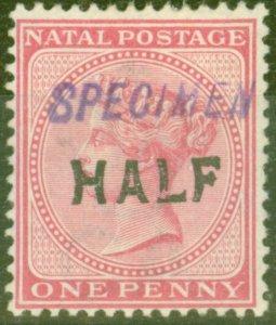 Natal 1895 Half on 1d Rose Specimen SG125s Fine Mtd Mint