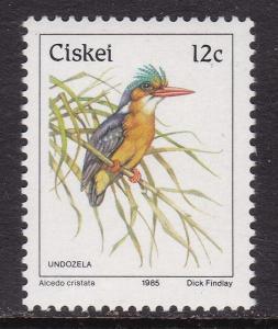 Ciskei, Fauna, Birds MNH / 1985