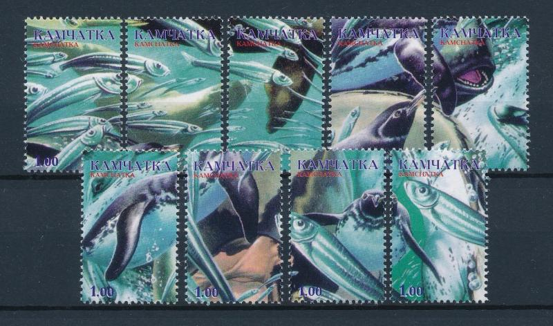 [47690] Kamchatka Private issue  Marine life Fish Penguins MNH